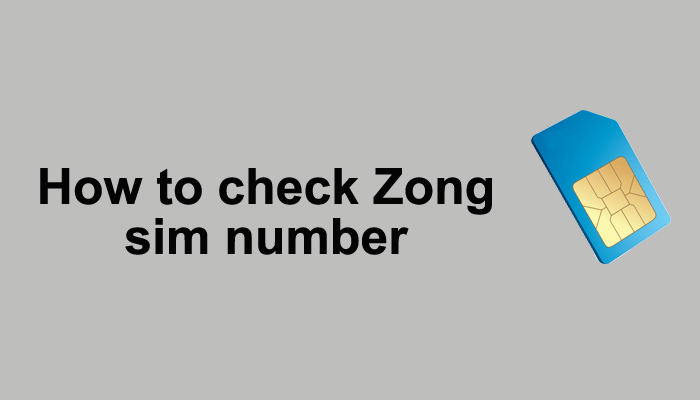 process to check a Zong number without balance